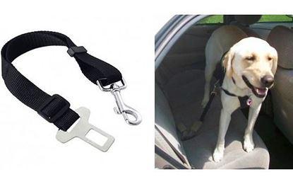 Obrázok Bezpečnostný pás pre psa