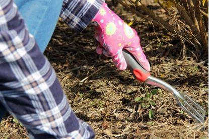 Obrázok Zahradní rukavice - dámské