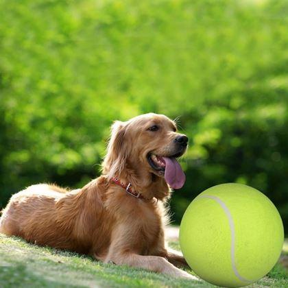 Obrázok z Maxi tenisová loptička