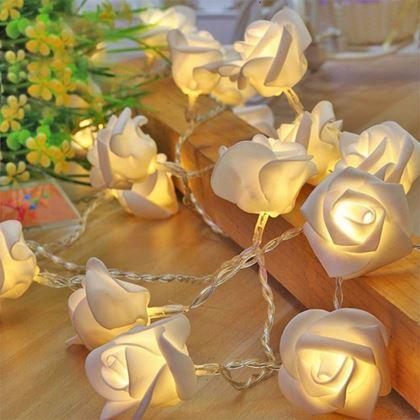 Obrázok z Svietiaca ruža