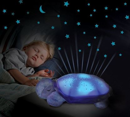 Obrázok Nočná svietiaca korytnačka