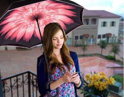 Obrázok z Obrátený dáždnik - kvetina