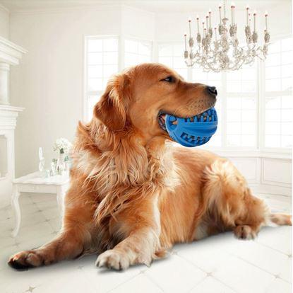 Obrázok Žuvacie loptička pre psov - veľká