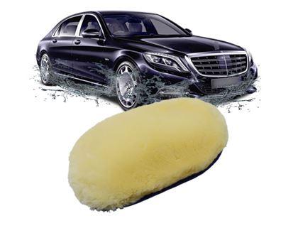 Obrázok z Špongia na umývanie auta