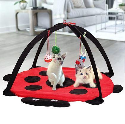Obrázok z Hracia podložka pre mačky