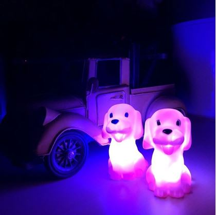 Obrázok z Lampička - psík