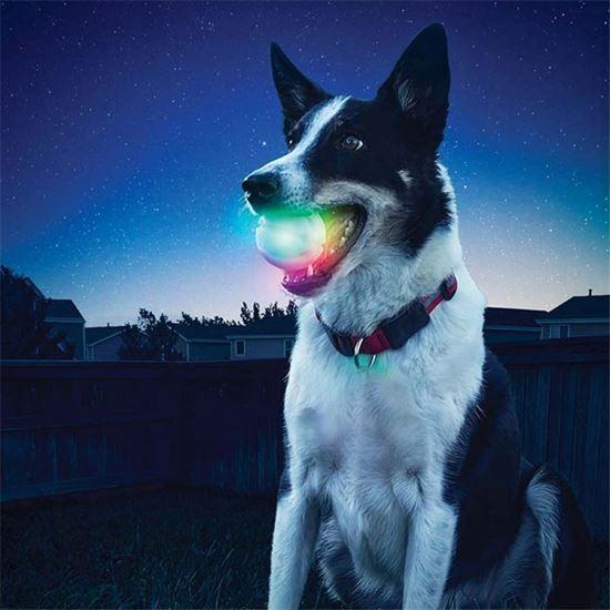 Obrázok z Svietiaca loptička pre psy