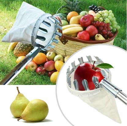 Obrázok Zberač na ovocie