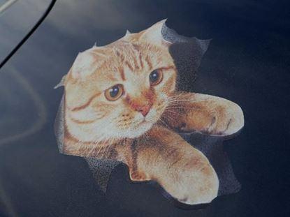 Obrázok Nálepka - mačka