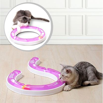 Obrázok Guľová dráha pre mačky