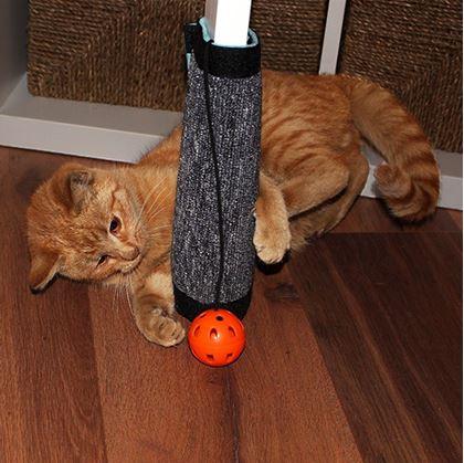 Obrázok z Škrabadlo pre mačky