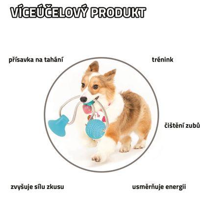 Obrázok z Hračka pre psov na čistenie zubov