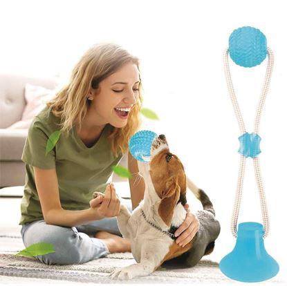 Obrázok Hračka pre psov na čistenie zubov