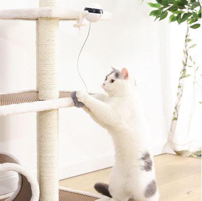 Interaktivní hračky pro kočky