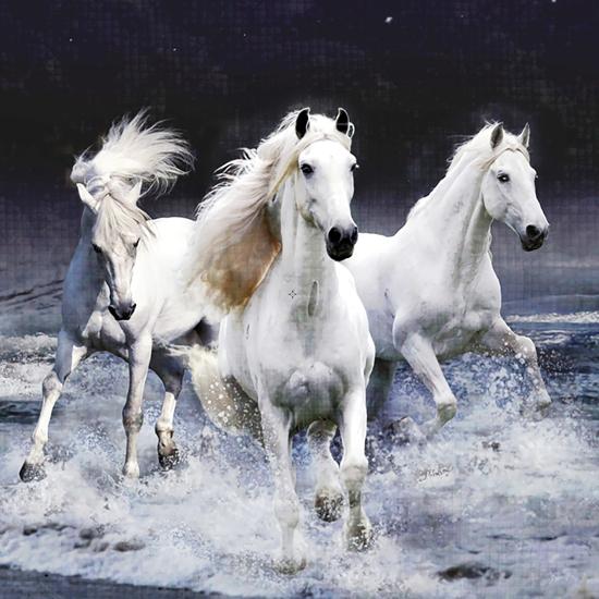 diamantové malování koně