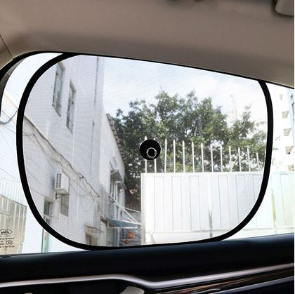 Clona do auta