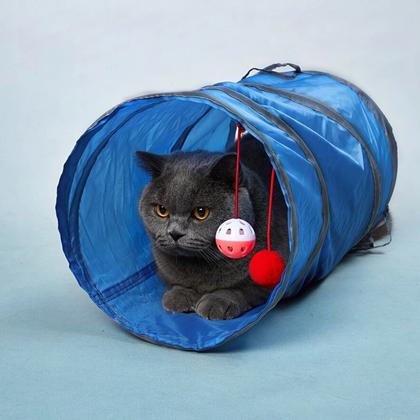 pro kočky