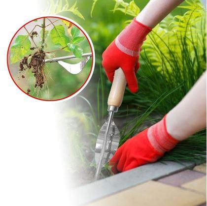 Odstranění plevele