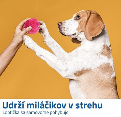 Loptička pre psov