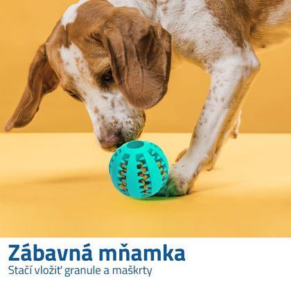 Čistiaca hračka pre psov