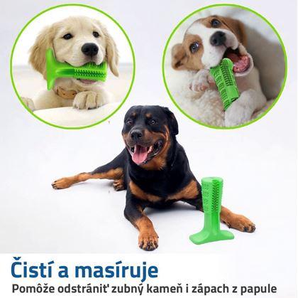zubná kefka pre psov