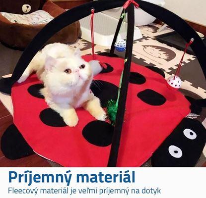 Obrázok Hracia podložka pre mačky